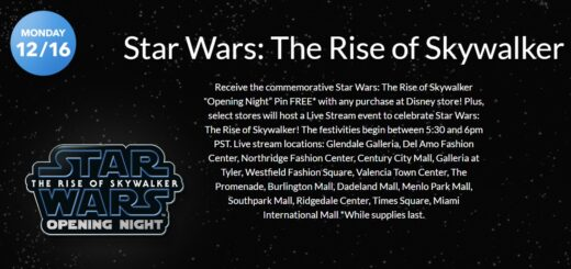 Rise of Skywalker Disney Store