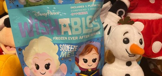 Frozen Ever After Wishables