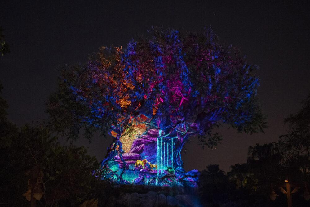 Disney World fireworks times