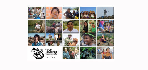 2019 Disney Conservation Fund Heroes
