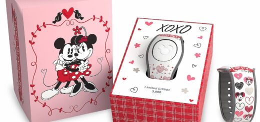 Valentine's Day MagicBand Giveway