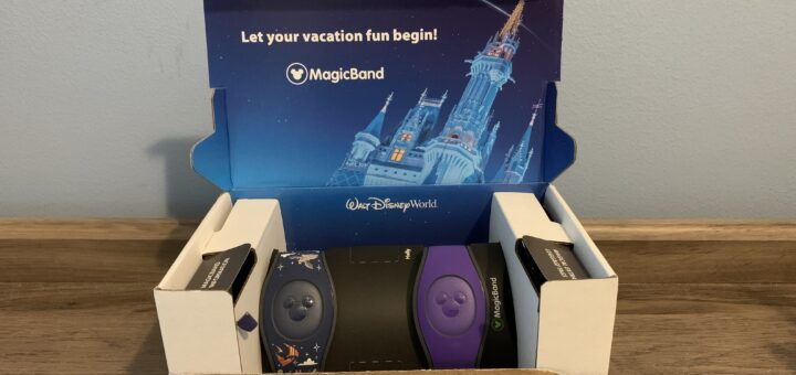 MagicBand Delivery