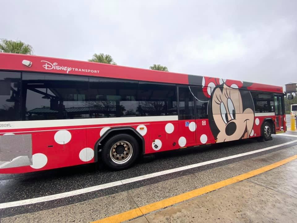 Malzoum Disney Cruise