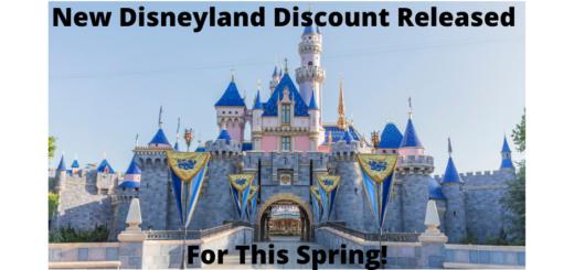Disneyland Spring Discount