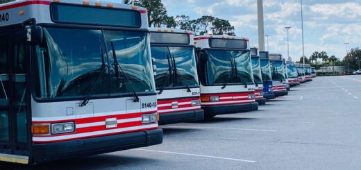 Resort Buses