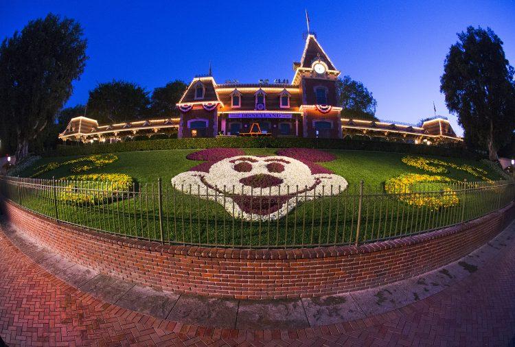 Disneyland Horticulture