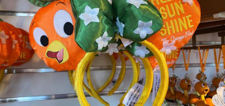 Orange Bird Ears