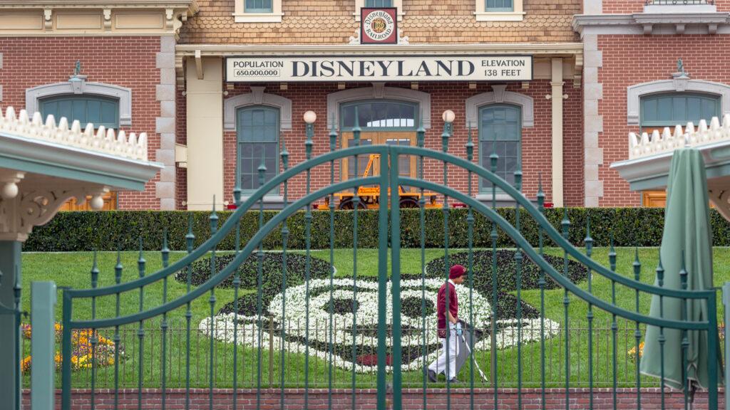 California Disneyland guidelines