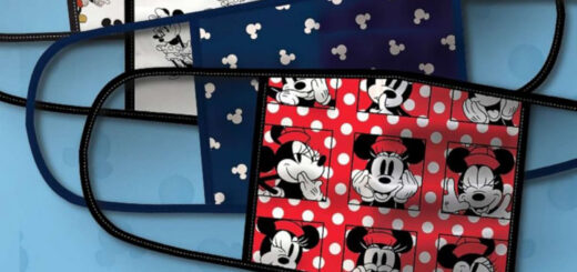 Disney World face coverings