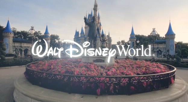 Disney World reopening video