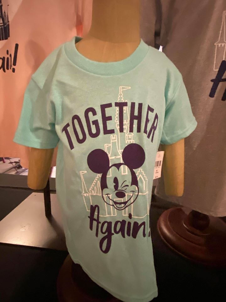 Together Again Disney World t-shirt