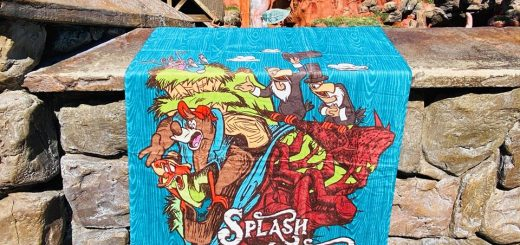 Splash Mountain towel