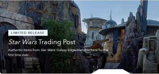 Galaxys Edge shopDisney
