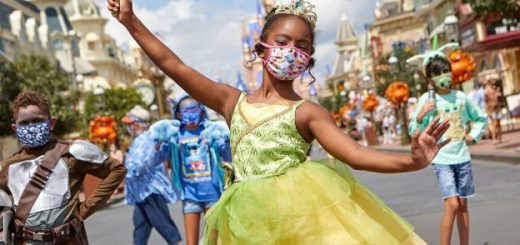 Disney masks Summer