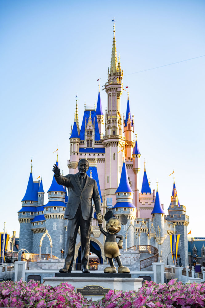 Disney World ticket offer, Tomorrow