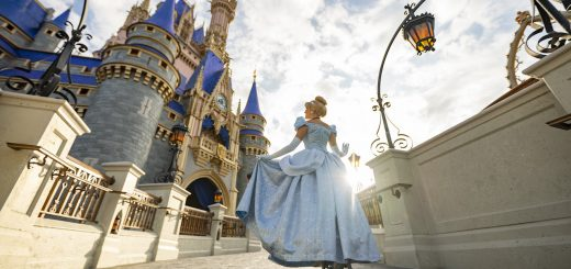 Disney World Ticket Update