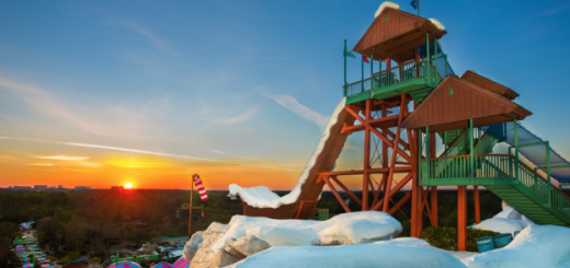 Blizzard Beach Re-Opening
