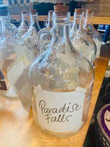 Paradise Falls Savings Jar