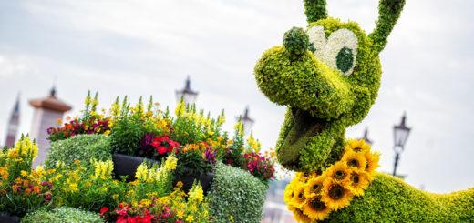 2021 EPCOT Flower Garden