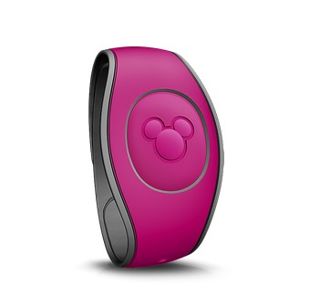 New MagicBands