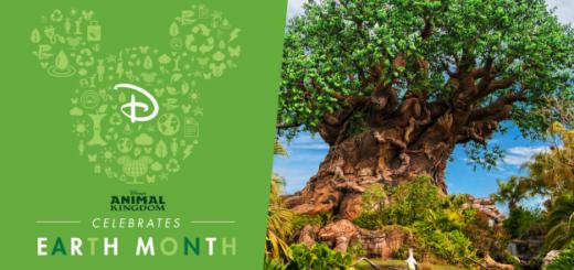 Earth Month Animal Kingdom