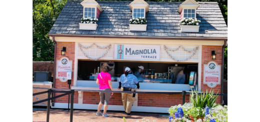 Magnolia Terrace Outdoor Kitchen