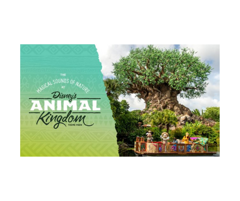 Animal Kingdom ASMR