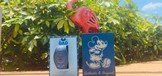 Best Disney DAD MagicBand