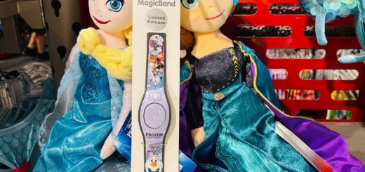 Frozen Ever After MagicBand