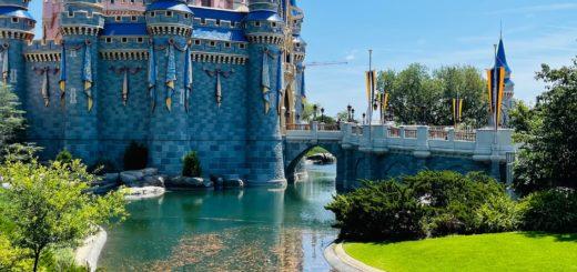 Disney World park capacity