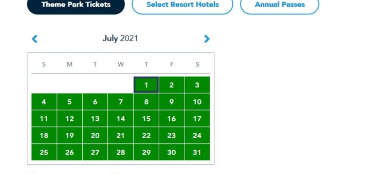 Disney reservations July
