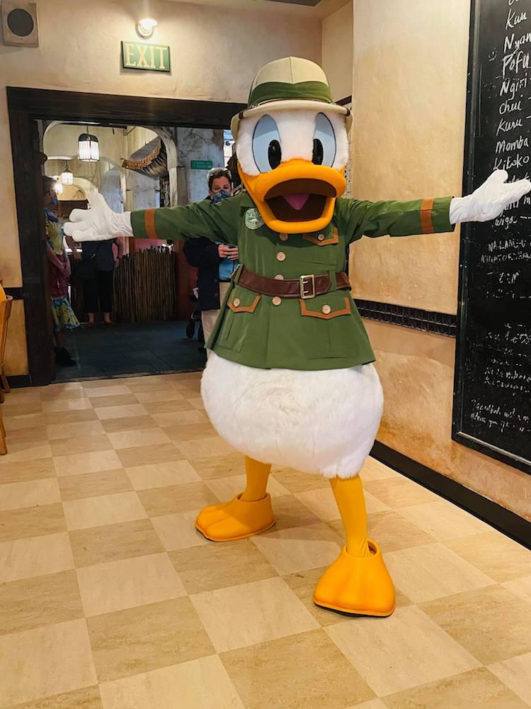Tusker House, Animal Kingdom, Donald Duck