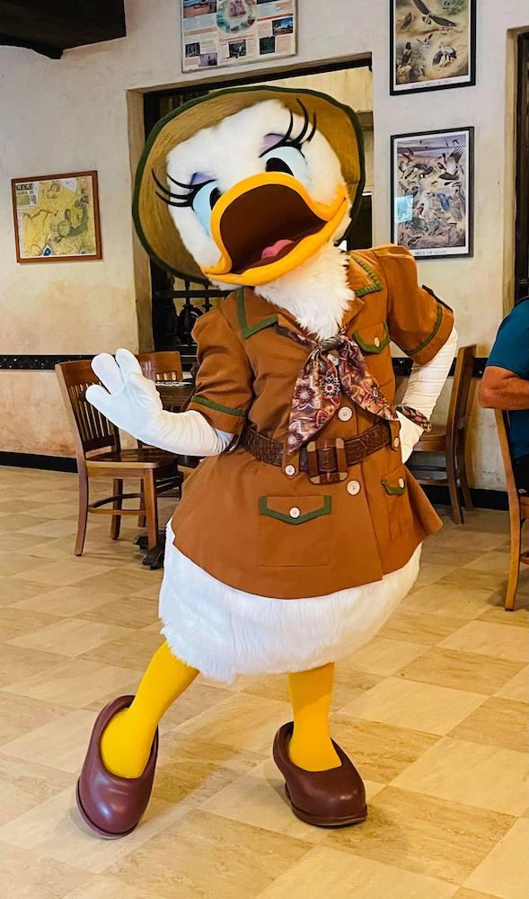 Tusker House, Animal Kingdom, Daisy Duck