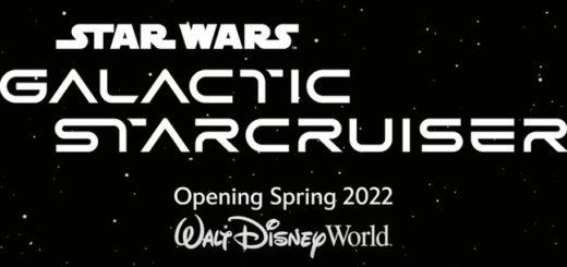 Star Wars Starcruiser open