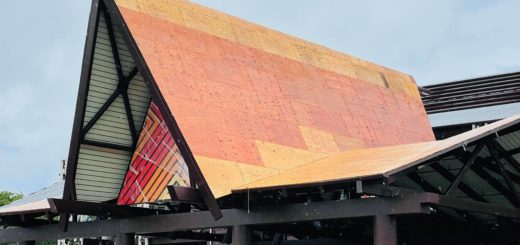 monorail polynesian2