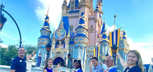 50th Crest added to Cinderella's Castle