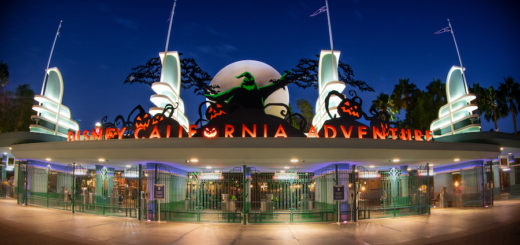 Disneyland Fall