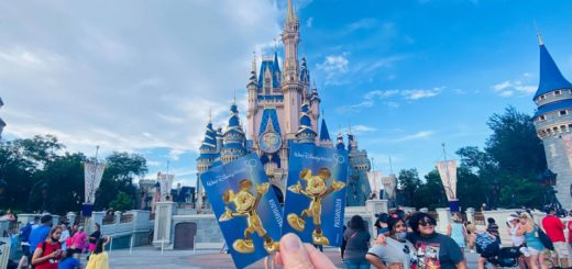 Annual Passholder cards